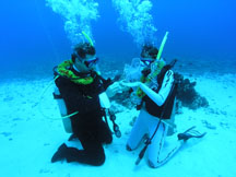 Maui Underwater SCUBA Wedding